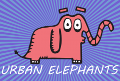Urban Elephants